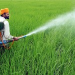 Pesticides Industry